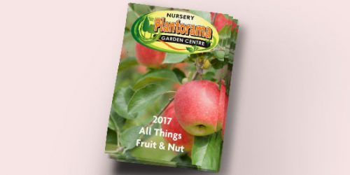 2017 All Things Fruit & Nut