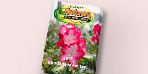2017 Rhododendron Catalogue