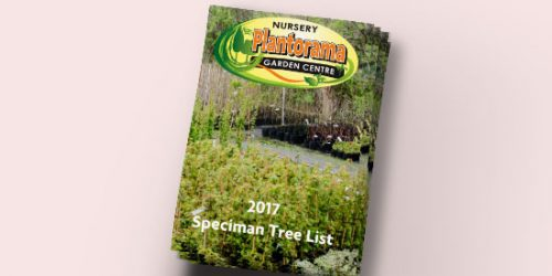 2017 Specimen Tree List